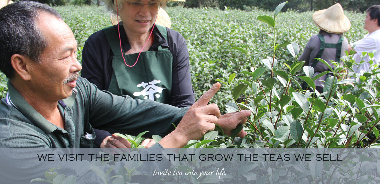 we visit the families that grow the teas we sell