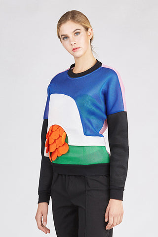 Mesh Color Blocked Sweatshirt