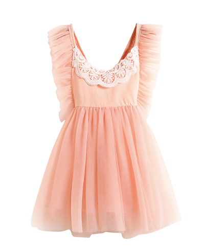 Amy Pink Tulle Dress