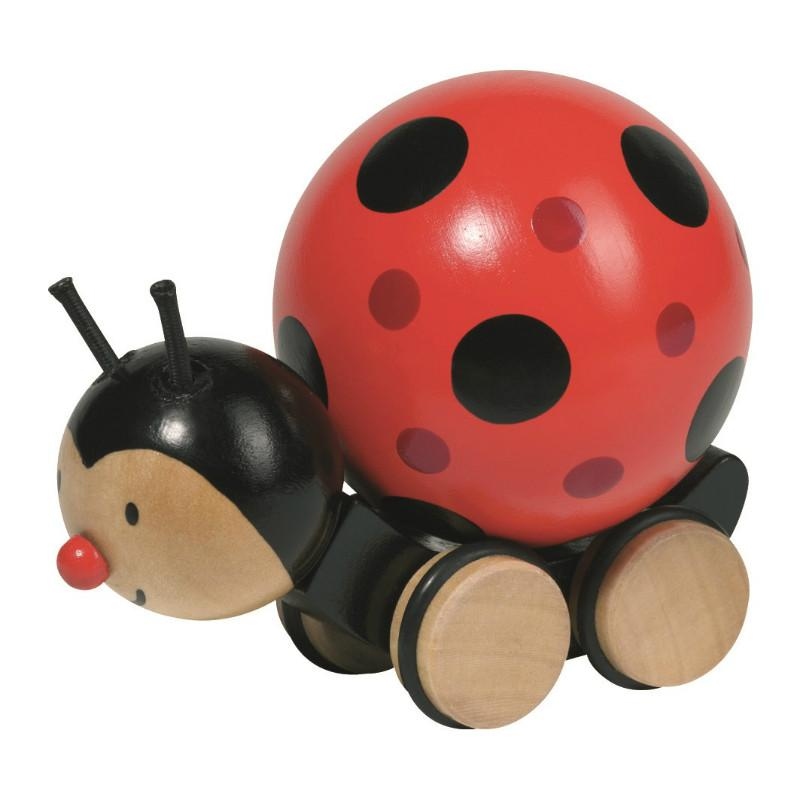 Push Along Ladybird