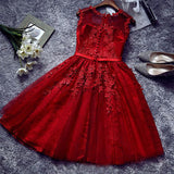 Chic A-Line Scoop Burgundy Tulle Modest Applique Lace Short Prom Dress Homecoming Dress AM382
