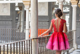 Red A-line Scoop Homecoming Dress Tulle Short Prom Drsess SKY806