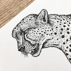 Cheetah - Signed Print #103
