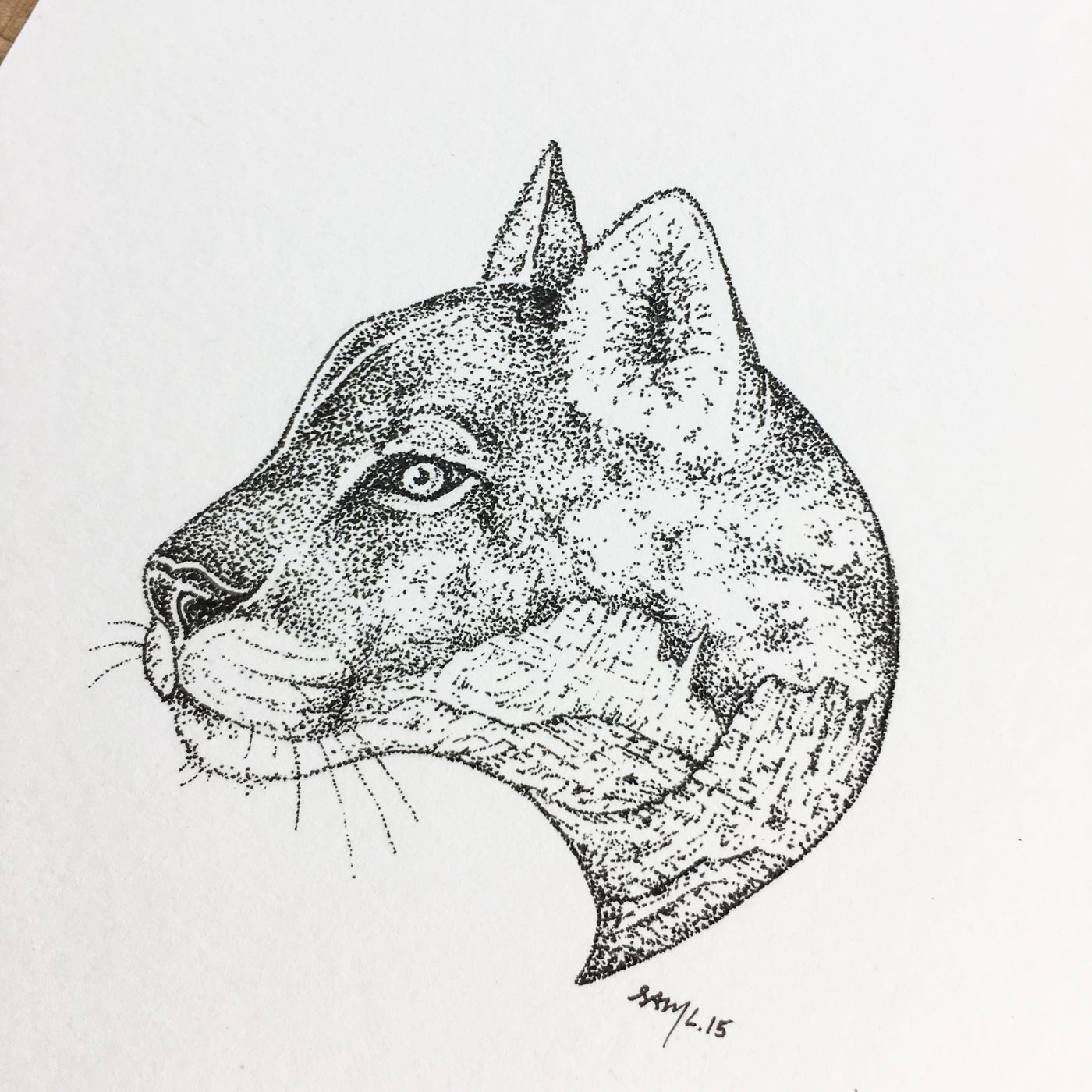 Desert Cat - Original Illustration 6x8in
