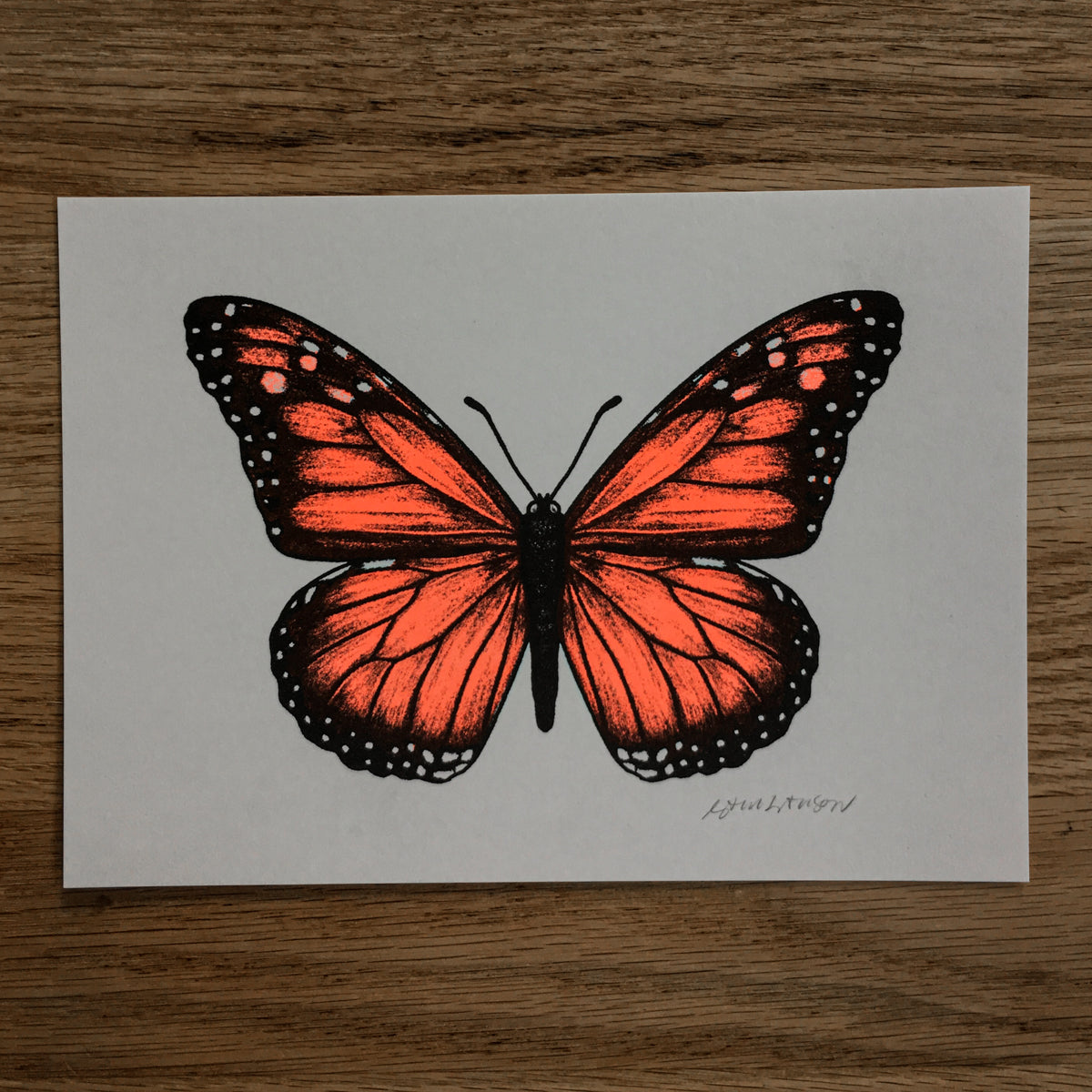 Monarch - Signed Print #111