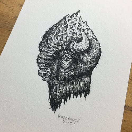 Mount Bison - Original Illustration 5x7in