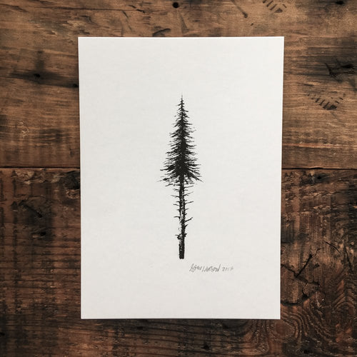 Evergreen - Signed Print #18