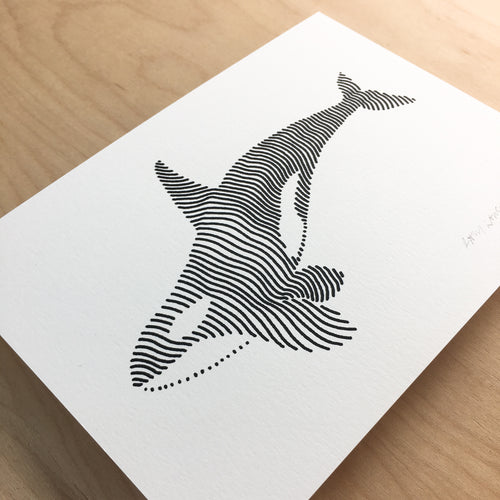 Lined Orca - Signed Print #138