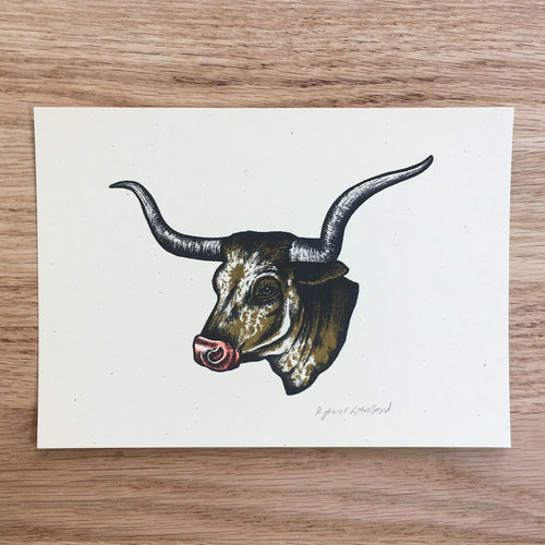 Texas Longhorn - Signed Print #106