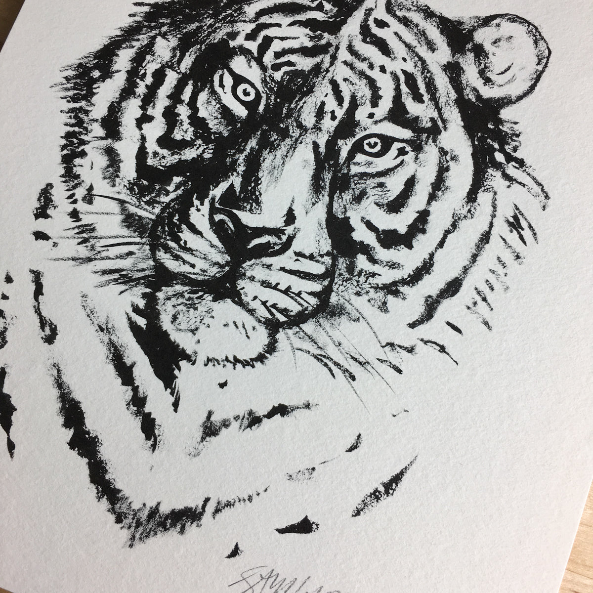 Tiger - Original Illustration 8x10in
