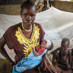 Buy the World Gifts net that protects and keep families safe from deadly diseases