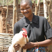 World Gifts Chirpy chickens help people like this lady smiling and holding her chicken