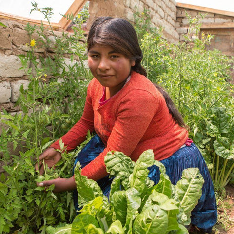 This World Gift, helps buy the essential materials for a greenhouse, enabling people like Rebeca to grow their own vegetables