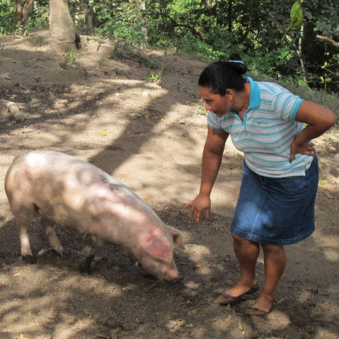 Dona Helen and her son secured a loan to help them buy pigs.