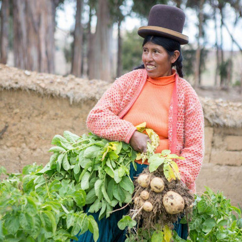 CAFOD helped Cristina to construct a vegetable garden.