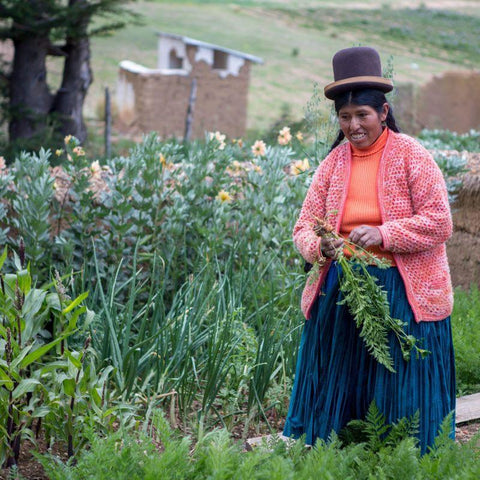 Cristina harvesting her vegetables.