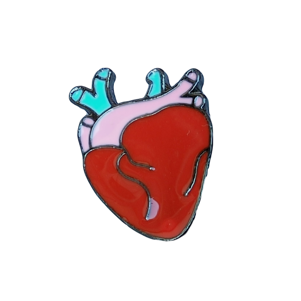 Brooch Pin - Anatomically Correct Heart