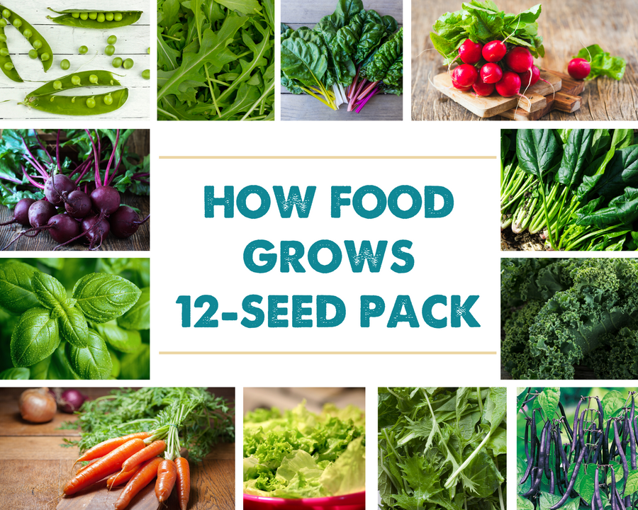 How Food Grows Seed Pack (12 varieties following the free GIY webseries)