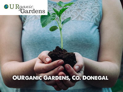 Using Social & Therapeutic Horticulture To Benefit People With Mental Health Support Needs, OURganic Gardens Donegal, July 27th & 28th