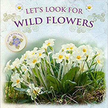 Let's look for Wild Flowers by Andrea Charlotte Pinnington