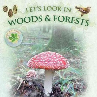 Let's look in Woods and Forest - Stick and Play Caz Buckingham, Andrea Charlotte Pinnington