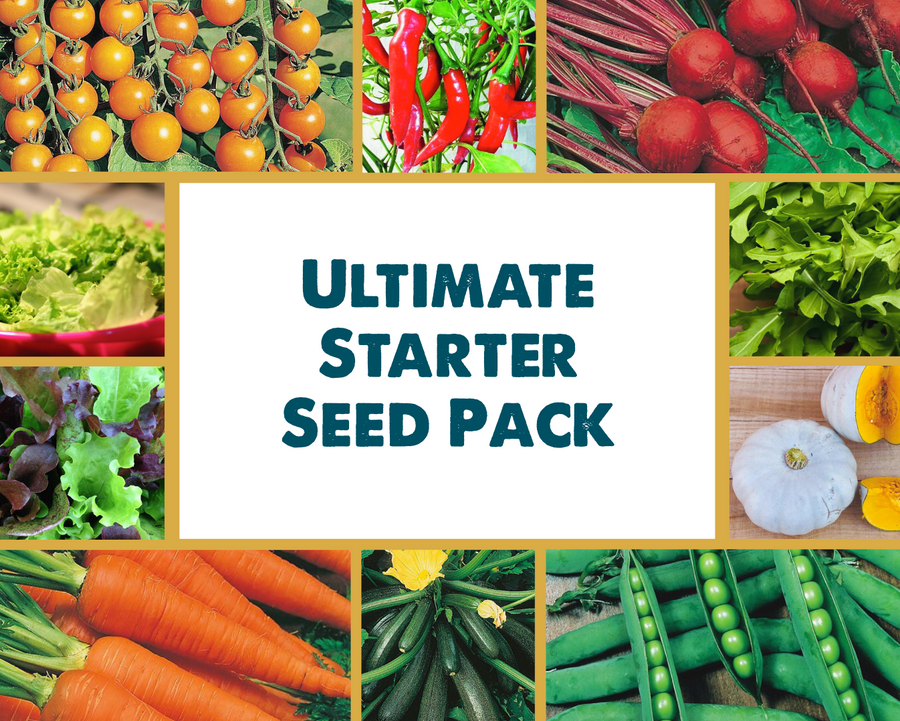 Ultimate Starter Seed Pack