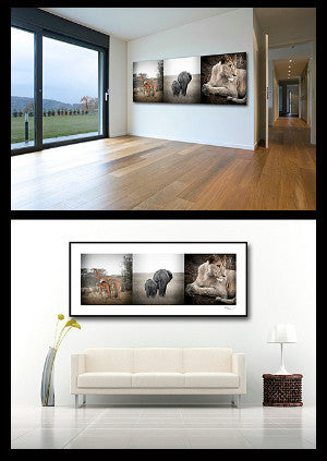Canvas or Framed? Getting the right look