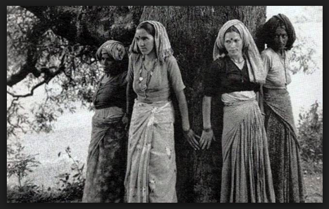 Cottonworld Chipko Movement