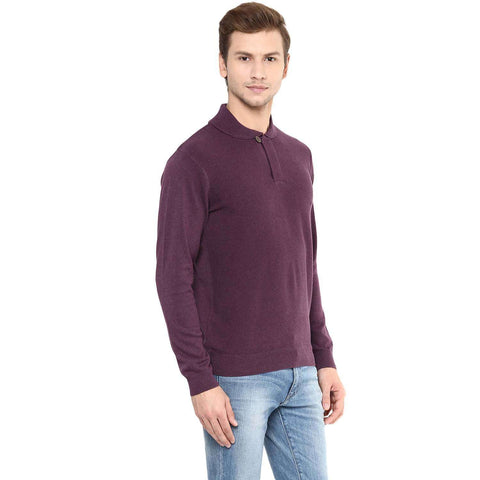 Cottonworld Men's Sweaters Men Purple Regular Sweater