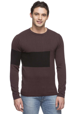Cottonworld Men's Sweaters MEN'S 100% COTTON PURPLE REGULAR FIT SWEATER