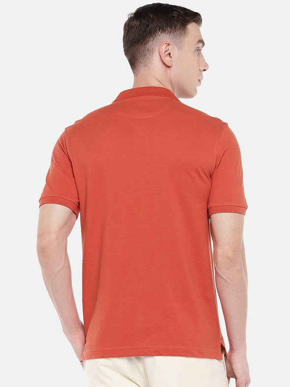 Cottonworld Men's Tshirts Men's Cotton Brick Regular Fit Tshirt