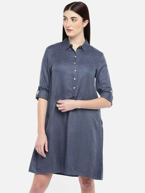 Women's Cotton Blue Regular Fit Dress
