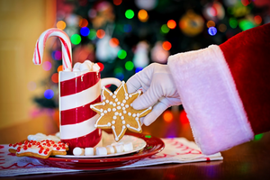 5 Easy Cookie Recipes For Santa