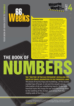 Bible Book Overview | Numbers | 04 of 66 |