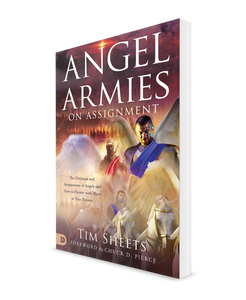 Angel Armies on Assignment [Book]