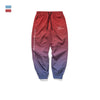 FV 2019 Chic pants