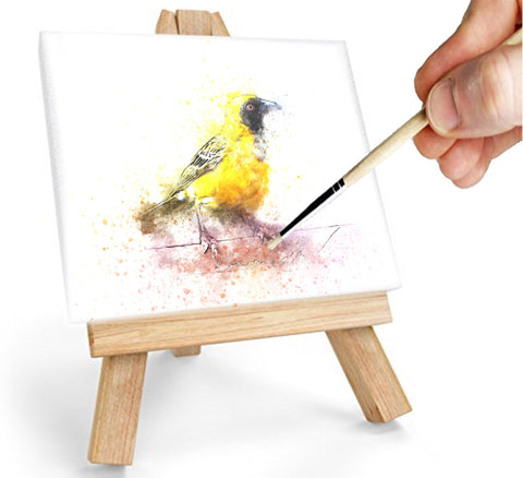 Daveliou™ through hard work, determination & dedication to the environmental cause, our small canvas paintings Set and all other products are natural  in composition  &  sustainable, taking a long-term  rather than a short-term  view of our resources.