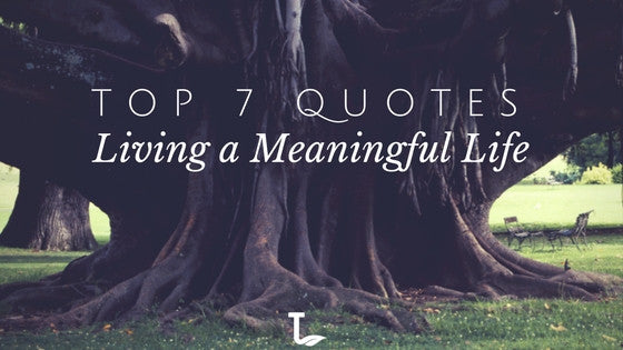Top 7 Quotes Living A Meaningful Life Taste Tea Naturals