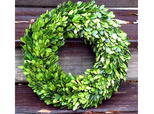 Boxwood Country Manor Round Wreath 14""