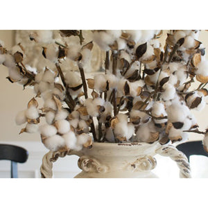 Farmhouse Cotton Stems