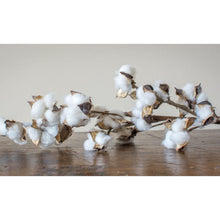Load image into Gallery viewer, Farmhouse Cotton Stems
