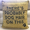 Reversible Dog Hair Pillow