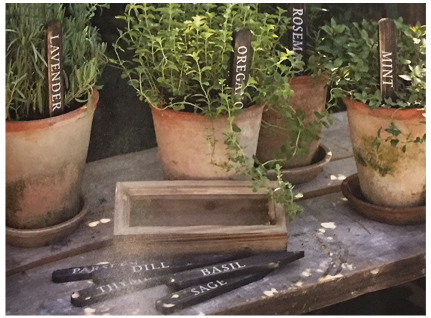 Wooden Herb Plant Stakes in a Box