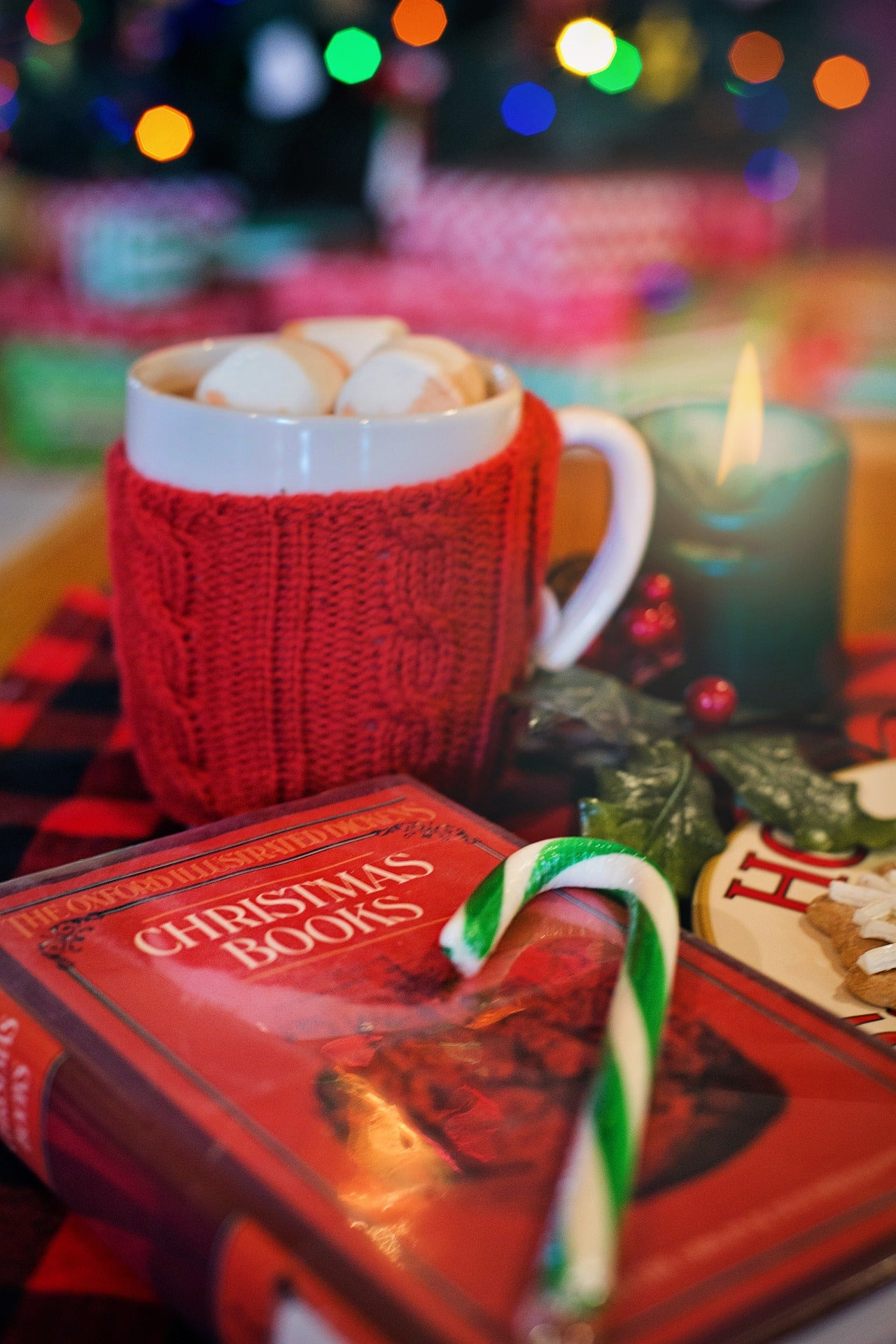 5 Festive Family Books for the Holidays