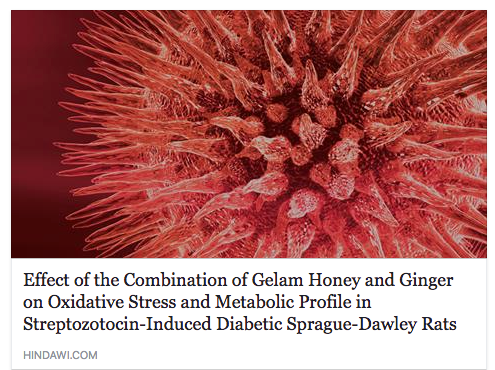 Research of Gelam Honey On Cancer