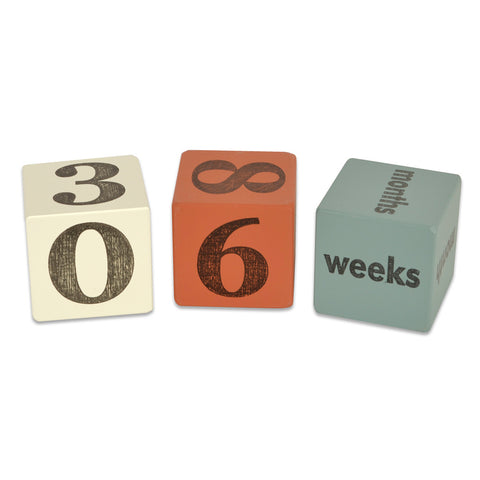 baby age blocks - set of 3 (five color options) - Tree by Kerri Lee