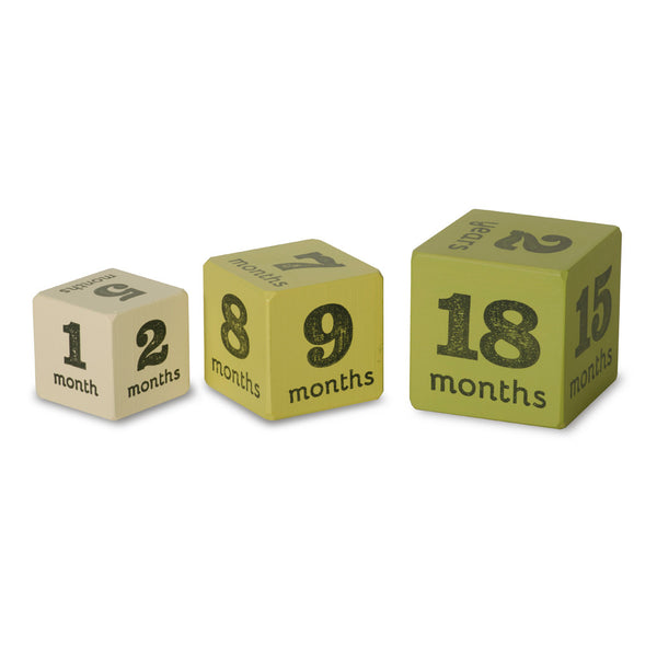 baby age blocks - multisize milestone ages (5 color options)