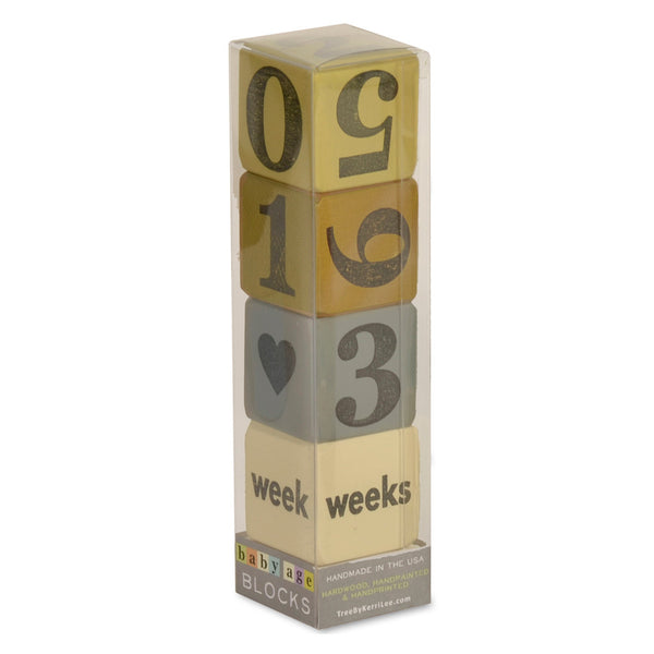 baby age blocks - set of 4 (three color options)