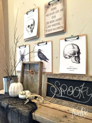 Spooktacular Decor