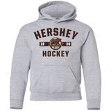 Hershey Bears Youth Established Pullover Hoodie